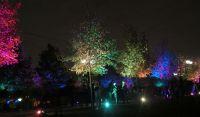 "Фестиваль ""Круг Света"" - Система подсветки - фото 2"