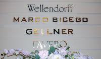 Wellendorff - фото 1
